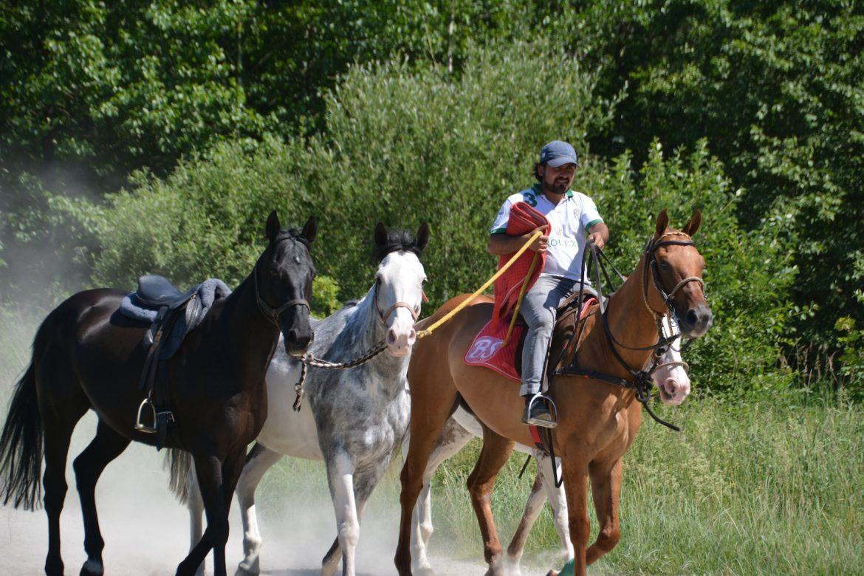 Es prickelt – Polo am Chiemsee